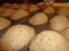 paleo-coconut-madeleines-017