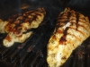 grilled-turkey-tender-013