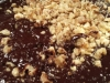 paleo-hazelnut-chocolate-walnut-cake-012