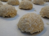 paleo-meyer-lemon-coconut-macaroons-018