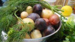 Paleo Potato Salad-001