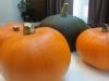 pumpkin-walnut-loaf-005