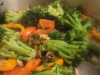 sauted-vegetable-chicken-salad-032
