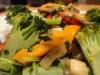 sauted-vegetable-chicken-salad-036
